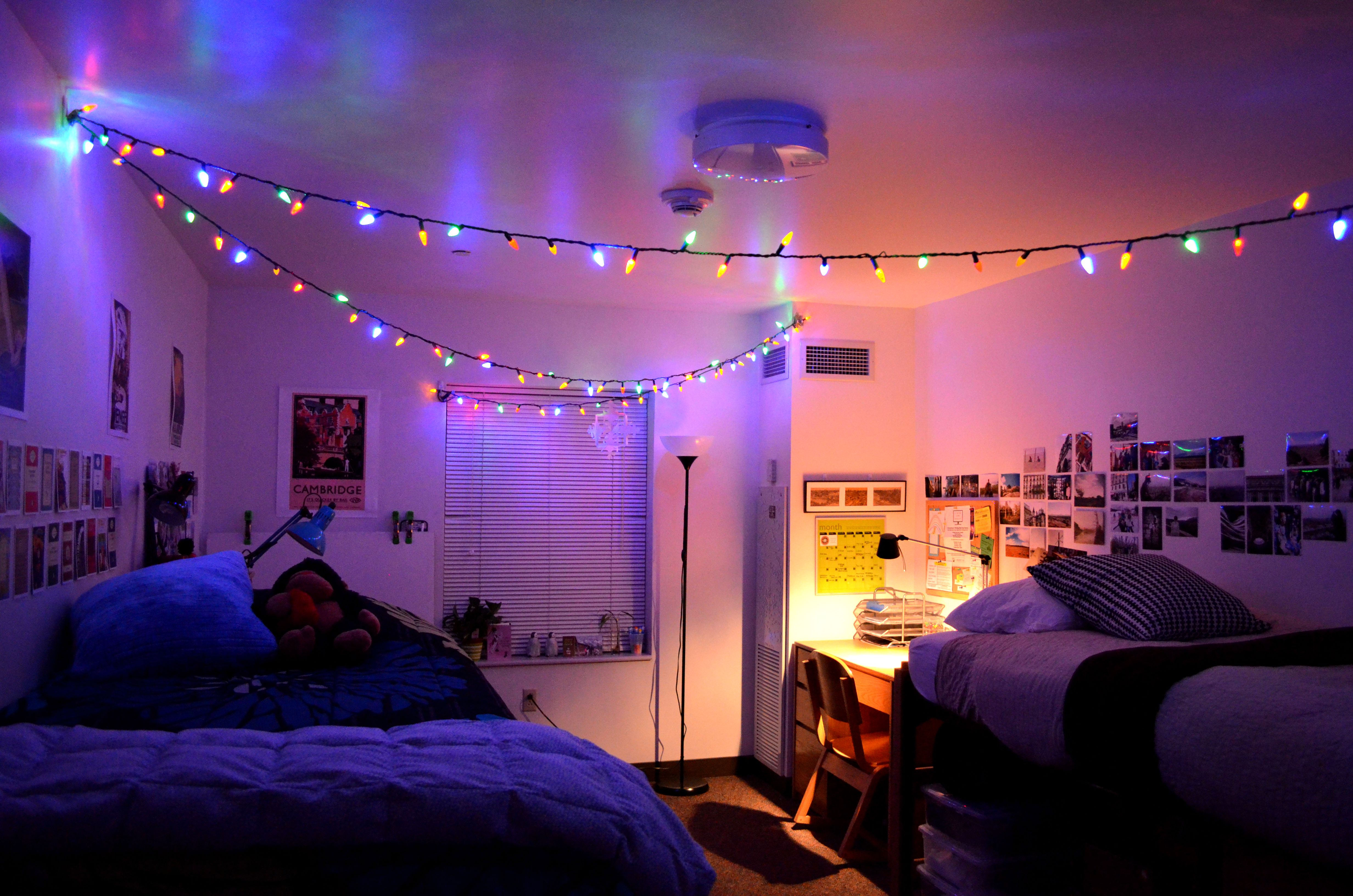 Best String Lights For Dorm Rooms : Dorm wustladmissionsanastasia